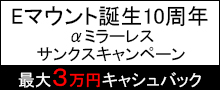 ソニー αミラーレスサンクスキャンペーン 最大30,000円キャッシュバック