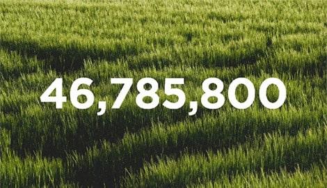 46,785,800